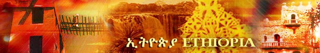 banner3-1.jpg